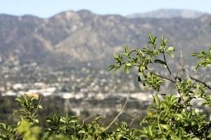 Local Title Loans Glendale - Phoenix Title Loans